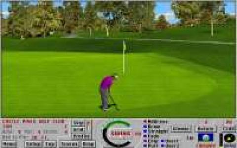 Links: Championship Course: Castlepines - game cover