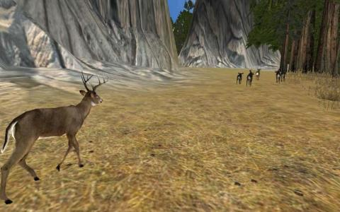 Deer Hunter 2003 - title cover
