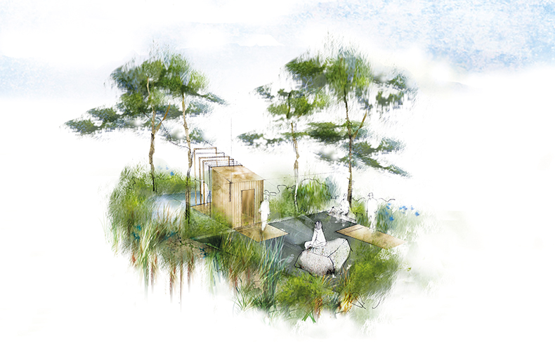 RHS Chelsea Flower Show 2016 first time designer Sam