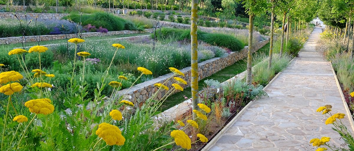 The Society of Garden Designers Garden Design Journal