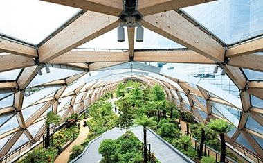 Project: Crossrail Place Roof Garden