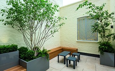 Project: Tiny hotel courtyard
