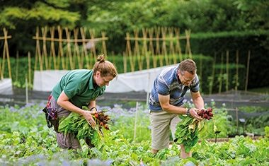 New horticulture school at Le Manoir