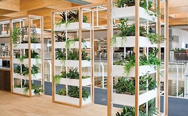 On trend: indoor gardens