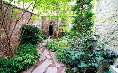 Project: Pocket garden New York