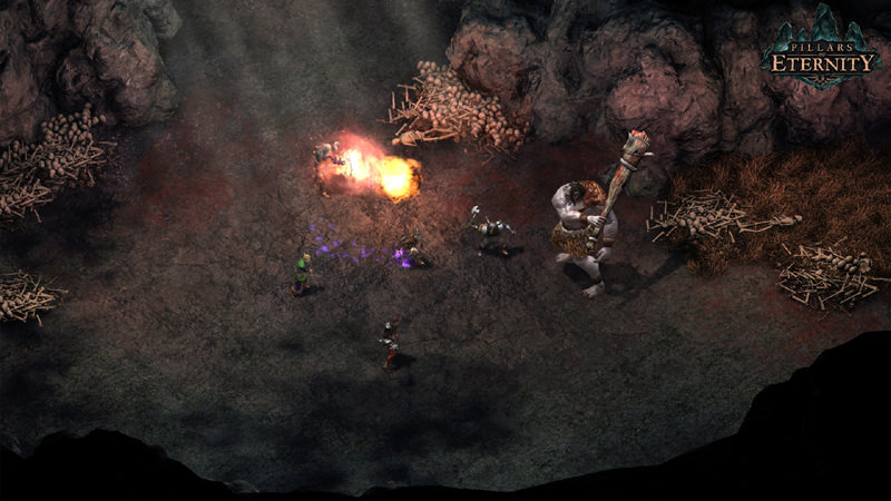 Picture of Pillars of Eternity - Hero Edition