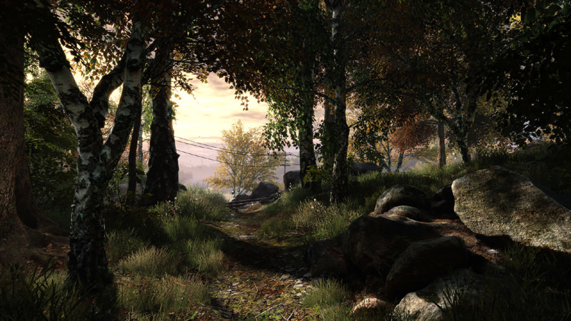 Picture of The Vanishing of Ethan Carter