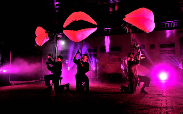 The Lips, Puppets with Guts, Autumn Glow, FESTIVAL.ORG, 2021.