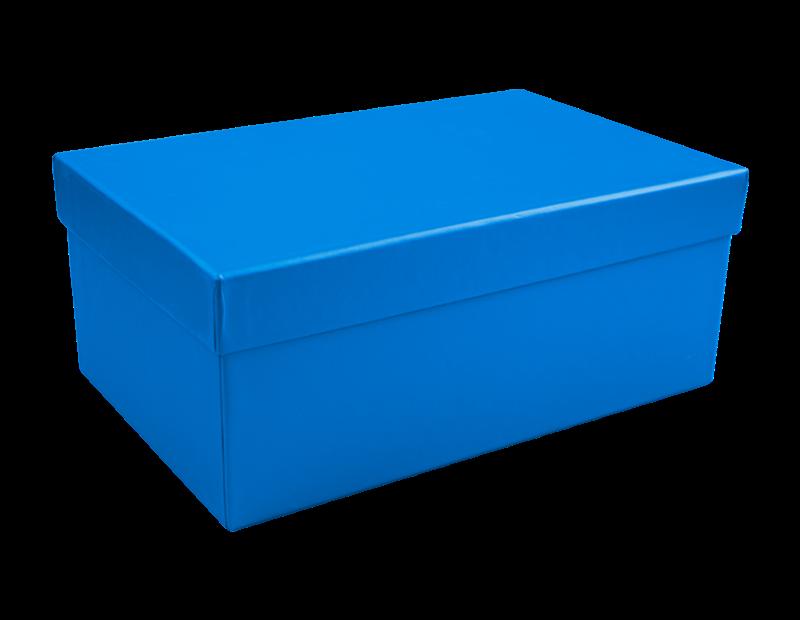 Bright Metallic Rectangular Gift Box 22cm x 14cm