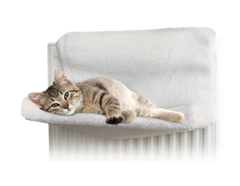 Radiator Pet Bed