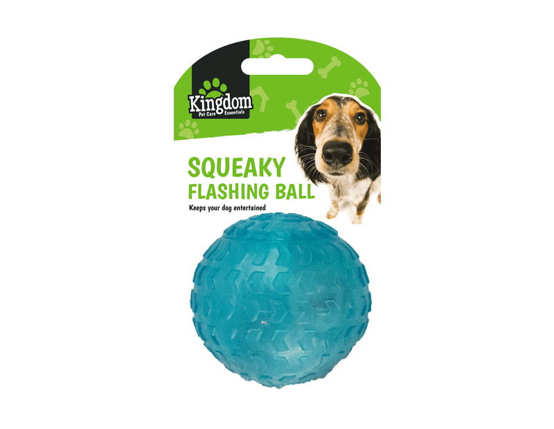 Squeaky Flashing Play Ball