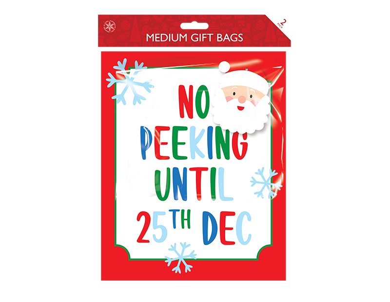 Christmas Cute Medium Gift Bags - 2 Pack