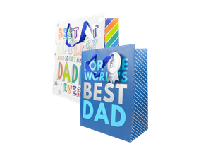Wholesale Fathers Day Large Gift Bags | Gem Imports Ltd