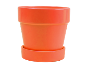Bright Ceramic Plant Pot & Saucer