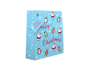 Christmas Luxury Medium Cute Gift Bag