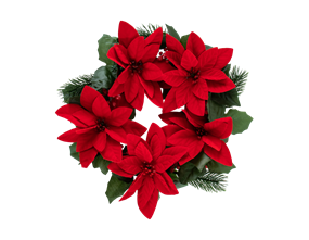 Wholesale Christmas Poinsettia Wreaths | Gem Imports Ltd
