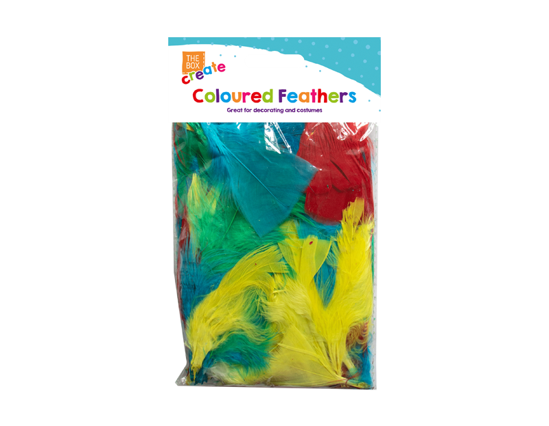 Coloured Craft Feathers - Multi Pack