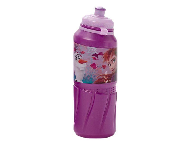 Frozen ll Sports Bottle