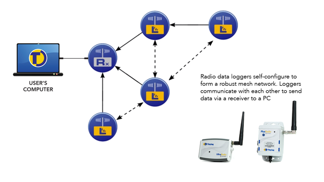 Radio data loggers configure to form a mesh network