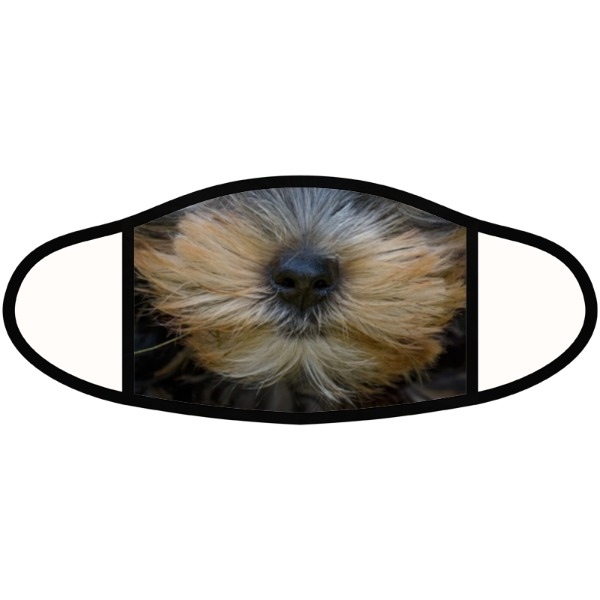Puppy Yorky Mask - Face Mask- Small