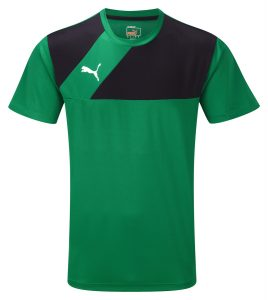 Puma Esquadra Training Jersey-Green/Black