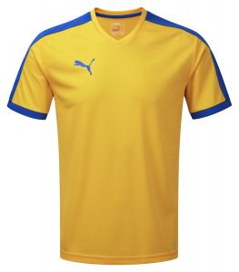 Puma Pitch S/S Shirt-Yellow/Royal