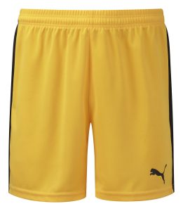 Puma Pitch Shorts-Yellow/Black