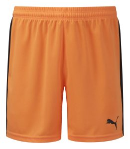 Puma Pitch Shorts-Orange/Black