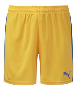 Puma Pitch Shorts-Yellow/Royal