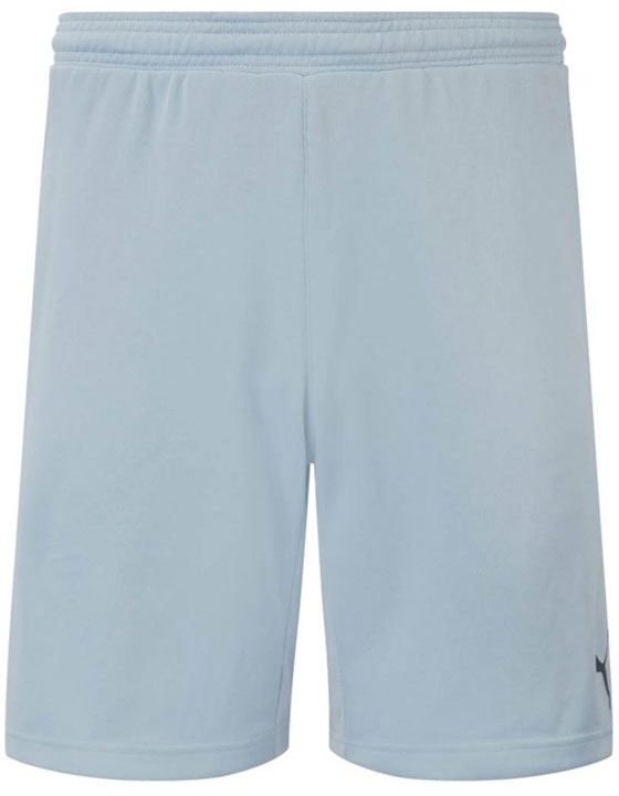 Puma Stadium GK Short - Grey/Ebony
