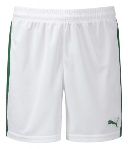 Puma Pitch Shorts-White/Green