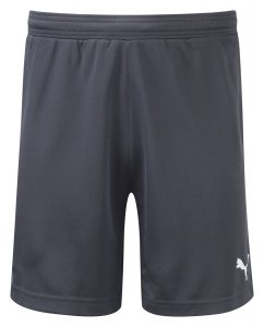 Puma Stadium GK Short-Black/Black