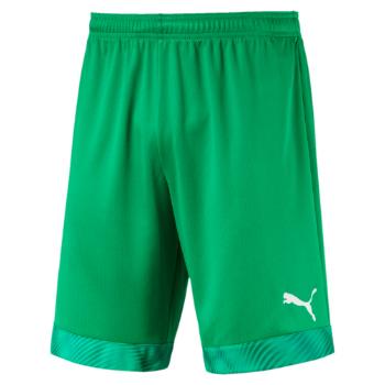 18227ce21 Puma CUP Short GK · Bright Green