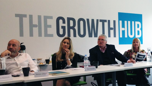 Meet The Mentors at The Growth Hub: Your first steps to success