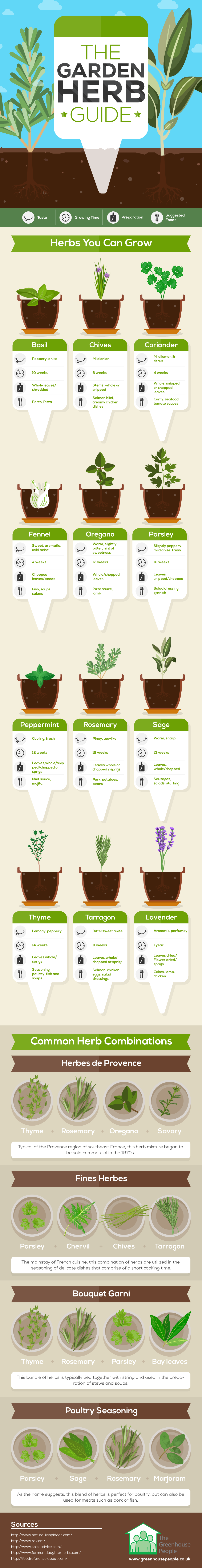 The herb garden guide