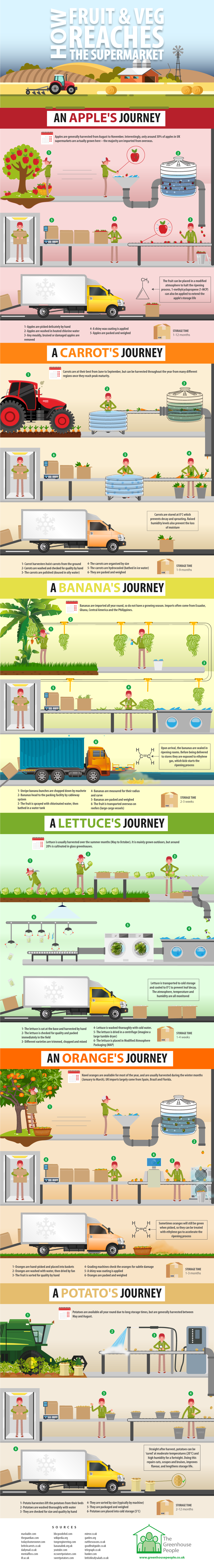 How food reaches supermarkets info graphic