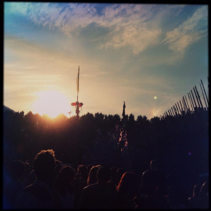 De pauw staat klaar om haar veren te spreiden tijdens de zonsondergang vlak voor de beeldenroute