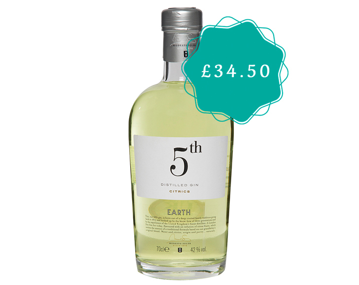 5th Gin Earth