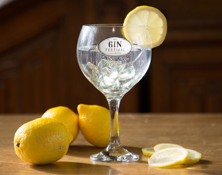 Nice Lemon Garnish for a gin and tonic