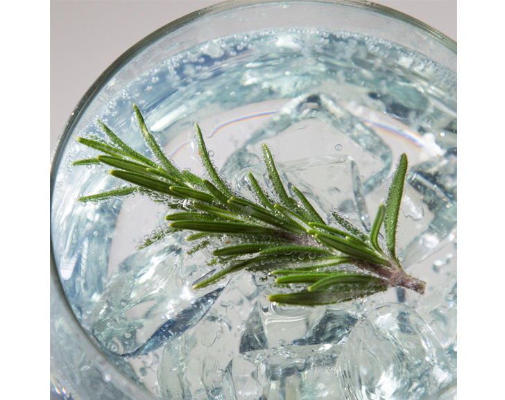 Rosemary Gin Garnish