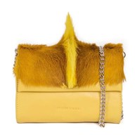 Sherene Melinda Fan Bag In Yellow