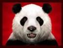 Il simbolo Wild della Wild Panda Slot Machine