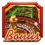 simbolo scatter e free spins di Riviera Riches slot machine