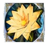 Il simbolo Wild della slot machine Paradise Found