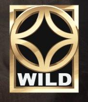Planet of the Apes Slot Machine: simbolo Wild