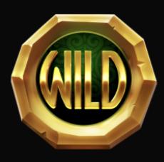 Rainbow Ryan Slot Machine: simbolo Wild