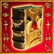 simbolo wild di Book of Ra slot machine