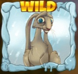Seasons Slot Machine: simbolo Wild