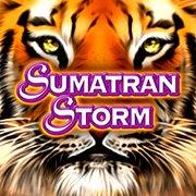 Il simbolo Wild della Sumatran Storm Slot Machine