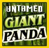 Il simbolo Wild della slot machine Untamed Giant Panda
